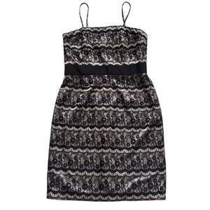 nwot WHBM Black Lace Gray Cocktail Dress 14